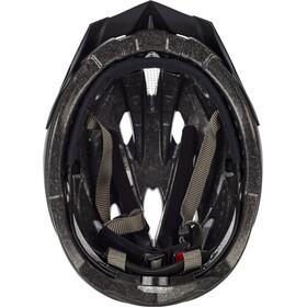 Alpina Panoma L.E. Helmet darksilver-titanium